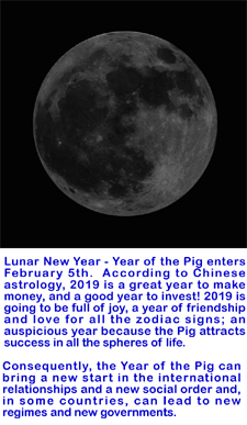 New Moon New Year Tet copy